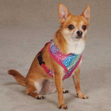 East Side Collection Confetti Print Dog Harness - Raspberry