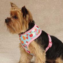 Fruit Frenzy Dog Harness
