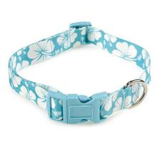 Hibiscus Dog Collar - Blue