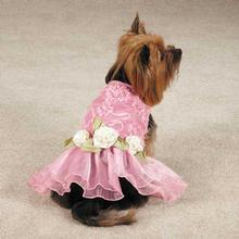 East Side Collection Rosette Lace Dog Dress - Pink