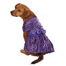 Vibrant Leopard Dog Dress - Ultra Violet