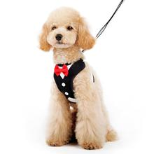 EasyGo Bowtie Dog Harness by Dogo