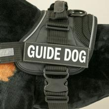 EzyDog Convert Harness Custom Side Patches - Guide Dog
