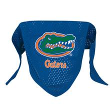Florida Gators Mesh Dog Bandana