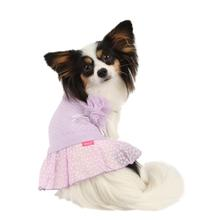 Foxy Dog Dress by Pinkaholic - Violet