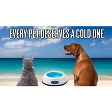 FroBo Pet Bowl and Freezer Core