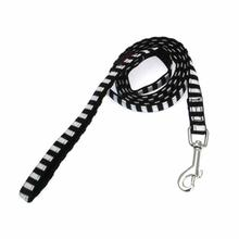 Frontier Dog Leash by Puppia - Black