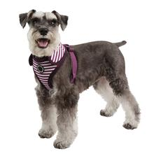 Frontier Superior Dog Harness by Puppia - Purple