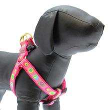 Funky Pink Circles Dog Harness by Up Country