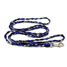 Ghost Dog Leash - Blue