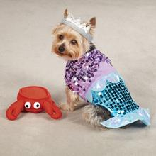 Glim-Mermaid Halloween Dog Costume