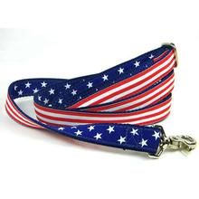 Grand Old Flag Essential Dog Leash