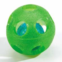 Grriggles FUNdamentals Blink-A-Roo Dog Toy - Green