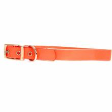 Guardian Gear Waterproof Dog Collar - Orange