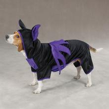 Halloween Bat Costume for Dogs by Casual Canine