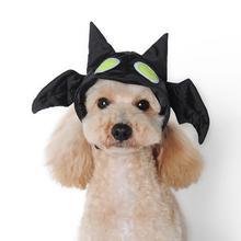 Halloween Bat Dog Hat by Dogo