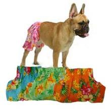 Hawaiian Swim and Board Dog Trunks - Orange