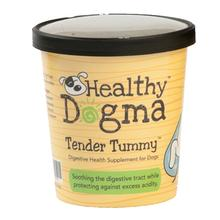 Healthy Dogma Tender Tummy Digestive Health Dog Supplement