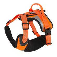 Hurtta Active Dazzle Dog Harness - Orange