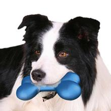 Hydro Bone Dog Toy