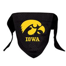 Iowa Hawkeyes Mesh Dog Bandana