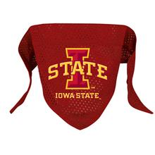 Iowa State Mesh Dog Bandana