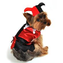 Jester Halloween Dog Costume by Anit