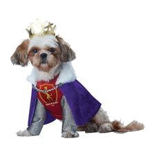 Kings of Bones Dog Costume