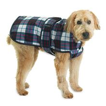 Kodiak Dog Coat - Navy and Red Plaid
