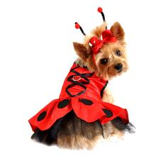 Ladybug Fairy Dress Set