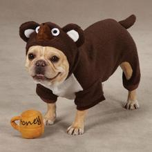 Li'l Honey Bear Dog Halloween Costume