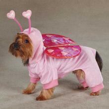 Love Bug Dog Costume