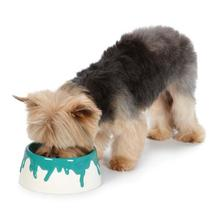 M. Isaac Mizrahi Paint Splatter Dog Bowl - Blue