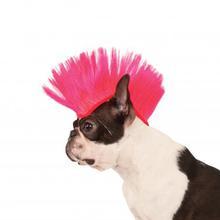 Mohawk Dog Wig - Electric Pink