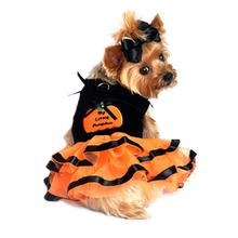 My Lil' Pumpkin Tutu Embroidered Dog Dress