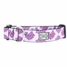 Nirvana Wide Clip Adjustable Dog Collar