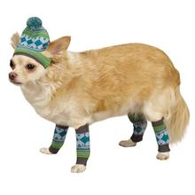 Northern Lights Dog Hat and Leg Warmer Set - Blue