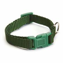 Nylon Dog Collar by Zack and Zoey - Hunter Green