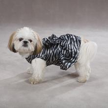 Platinum Print Zebra Dog Dress