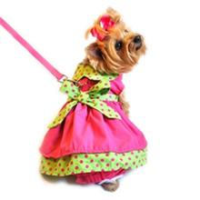 Polka Dot Dog Dress Set with Panties and Leash - Hot Pink and Lime