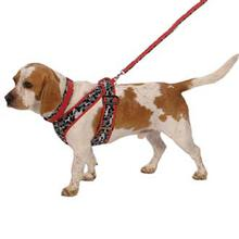 Precision-Fit Signature Print Dog Harness - Red