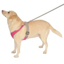 Precision Sport Mesh Dog Harness - Hot Pink