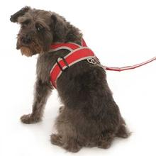 Precision-Fit Nylon Dog Harness - Red