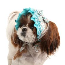 Primavera Dog Hat by Pinkaholic - Aqua