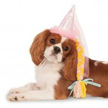 Princess Dog Hat with Braid - Pink