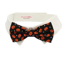 Pumpkin Dog Shirt Collar and Bow Tie