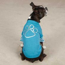 Punky Pup Foil Dog T-Shirt - Bluebird