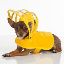 Push Pushi Rainbow Line Dog Raincoat - Yellow