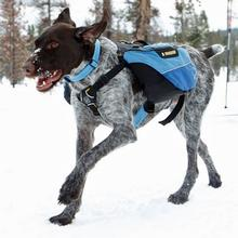 Recreational Approach Dog Pack by RuffWear - Glacial Blue