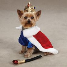 Royal Pup Halloween Dog Costume